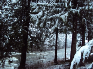 dawn snow5