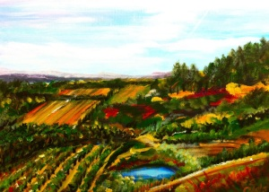 Vineyard view July 2014