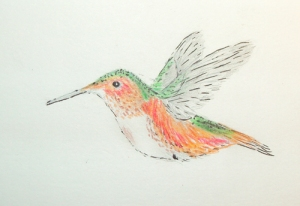 hummingbird light